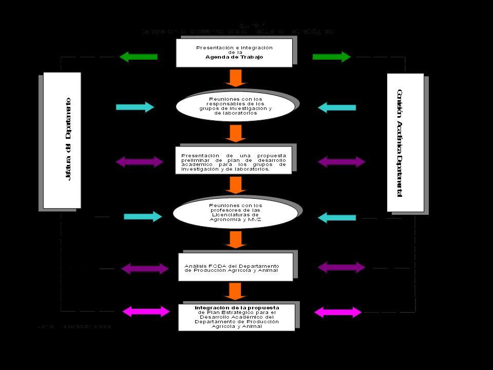 Productos documentales del proceso metodológico del estudio estratégico 1.Agenda de trabajo para la elaboración del Plan estratégico de desarrollo del Departamento.