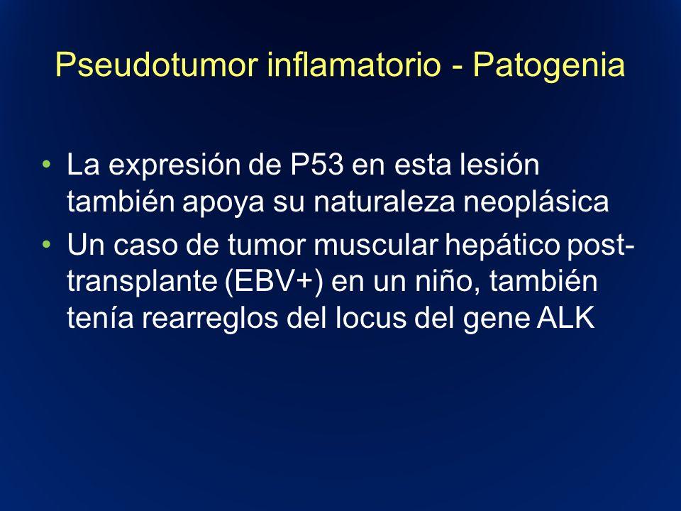 Pseudotumor inflamatorio - Patogenia La expresión de P53 en esta lesión también apoya su naturaleza neoplásica Un caso de tumor muscular hepático post