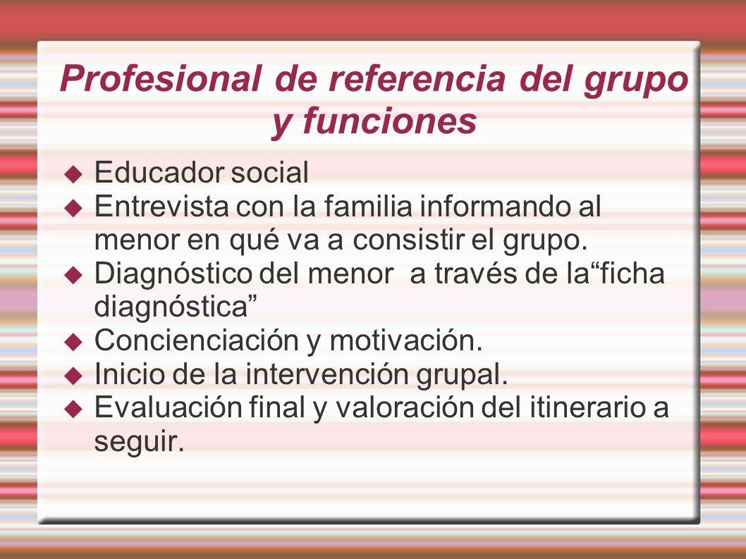 Profesional de referencia del grupo y funciones Educador social Entrevista con la familia informando al menor en qué va a consistir el grupo. Diagnóst