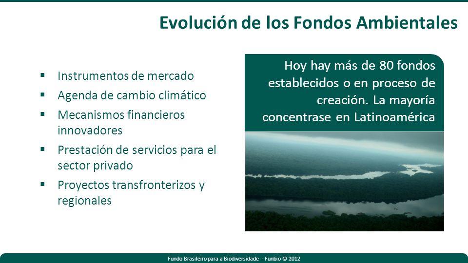 Fundo Brasileiro para a Biodiversidade - Funbio © 2012 Evolución de los Fondos Ambientales Instrumentos de mercado Agenda de cambio climático Mecanismos financieros innovadores Prestación de servicios para el sector privado Proyectos transfronterizos y regionales Hoy hay más de 80 fondos establecidos o en proceso de creación.