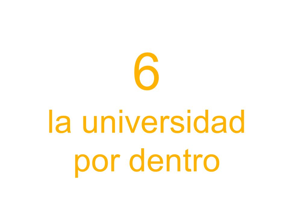 6 la universidad por dentro