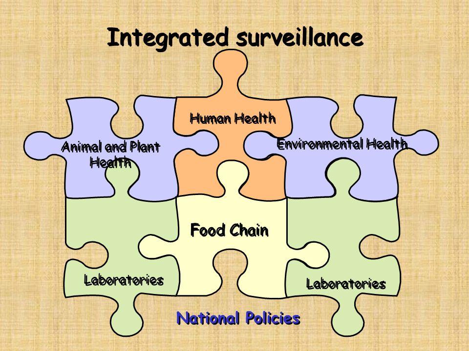 Integrated surveillance Animal and Plant Health Human Health Laboratories Food Chain Environmental Health National Policies Laboratories