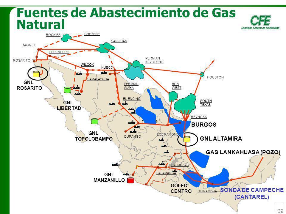 39 Fuentes de Abastecimiento de Gas Natural SAMALAYUCA EL ENCINO TORREON DURANGO ROSARITO EHRENBERG GNL TOPOLOBAMPO GNL ROSARITO GNL LIBERTAD DAGGET R