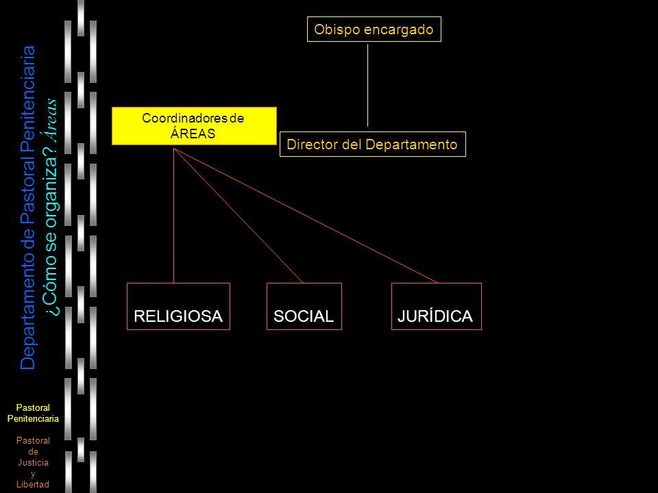Pastoral Penitenciaria Pastoral de Justicia y Libertad Departamento de Pastoral Penitenciaria ¿Cómo se organiza? Áreas Obispo encargado Director del D