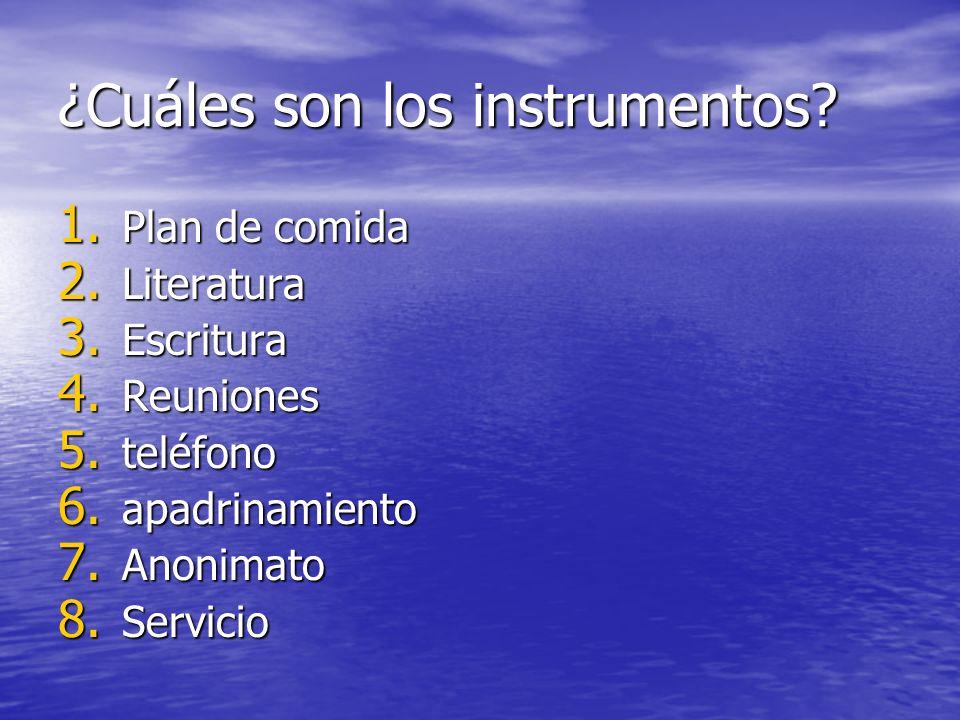 ¿Cuáles son los instrumentos? 1. Plan de comida 2. Literatura 3. Escritura 4. Reuniones 5. teléfono 6. apadrinamiento 7. Anonimato 8. Servicio