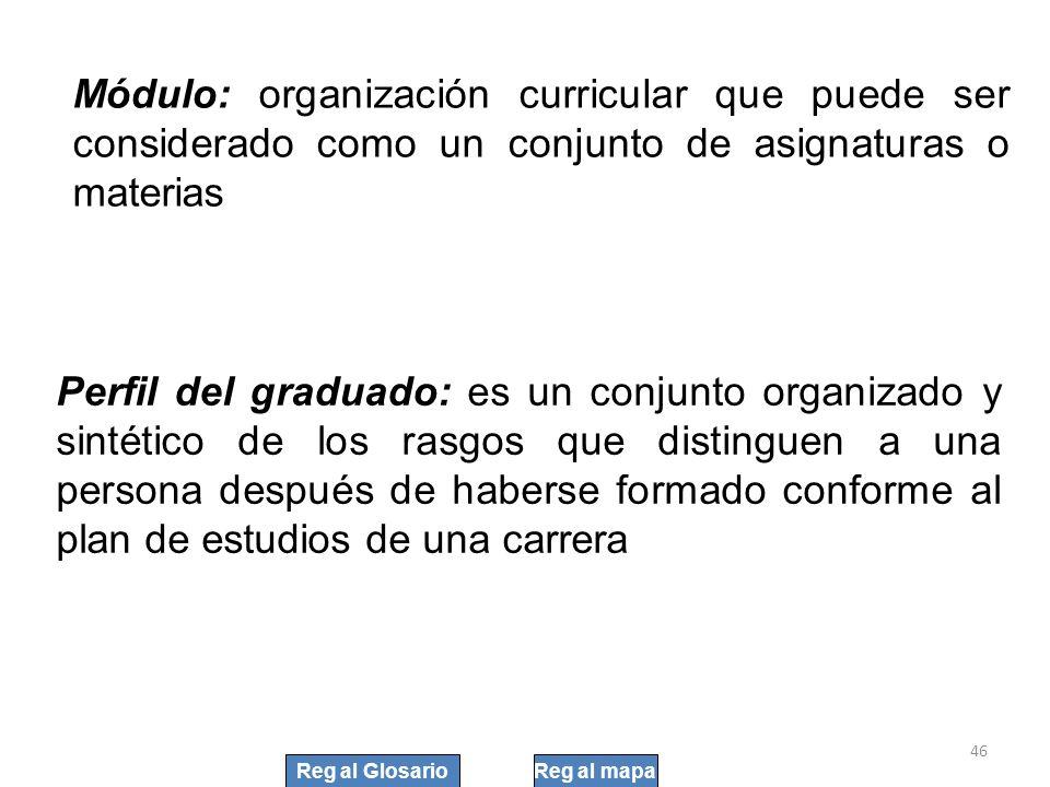 46 Módulo: organización curricular que puede ser considerado como un conjunto de asignaturas o materias Perfil del graduado: es un conjunto organizado