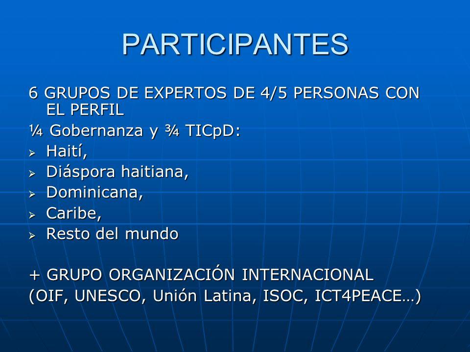 PARTICIPANTES 6 GRUPOS DE EXPERTOS DE 4/5 PERSONAS CON EL PERFIL ¼ Gobernanza y ¾ TICpD: Haití, Haití, Diáspora haitiana, Diáspora haitiana, Dominican