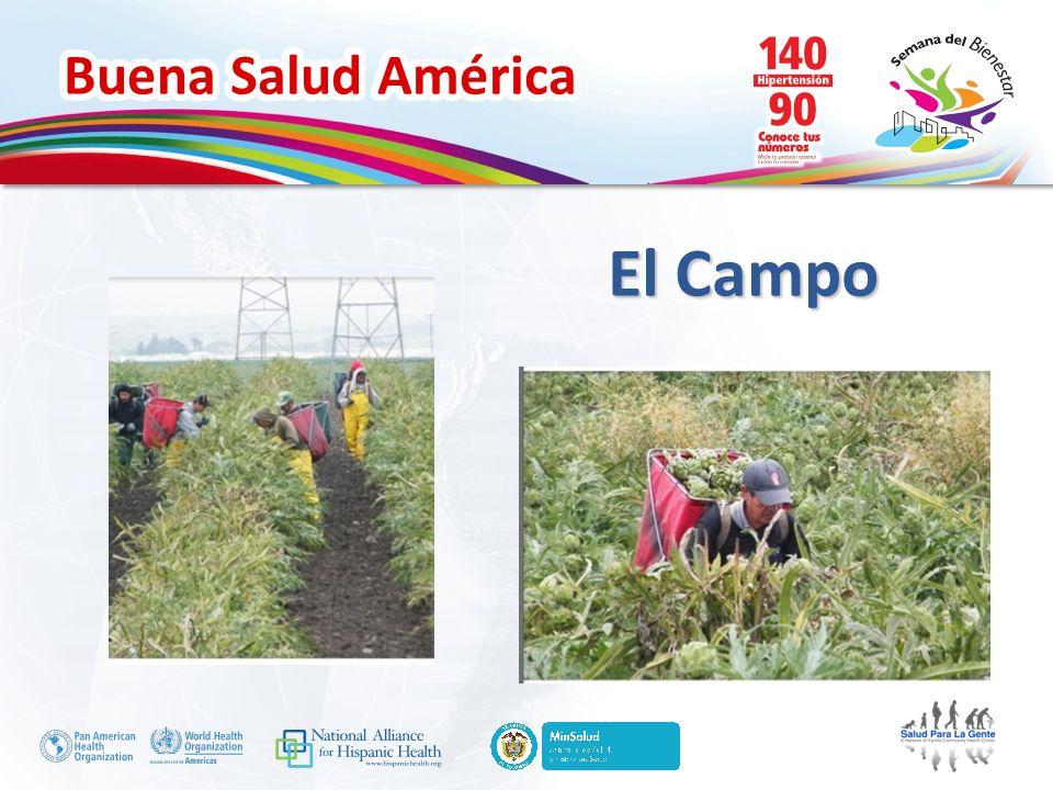 Buena Salud América Herramientras y Recursos www.hispanichealth.org www.ndep.nih.gov www.splg.org www.unitedwaysc.org www.diabetes.org/espanol www.learningaboutdiabetes.org