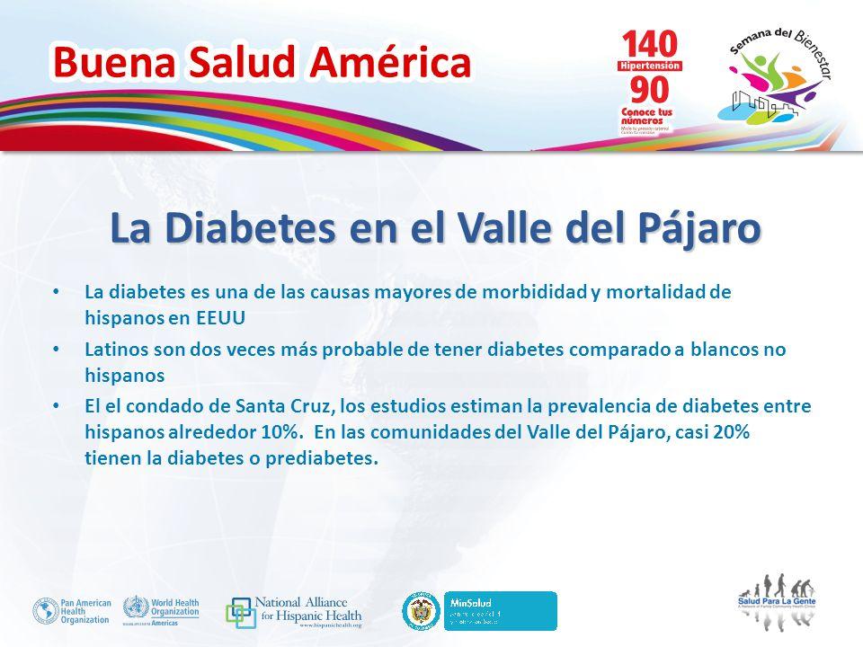 Buena Salud América La Diabetes en el Valle del Pájaro La diabetes es una de las causas mayores de morbididad y mortalidad de hispanos en EEUU Latinos