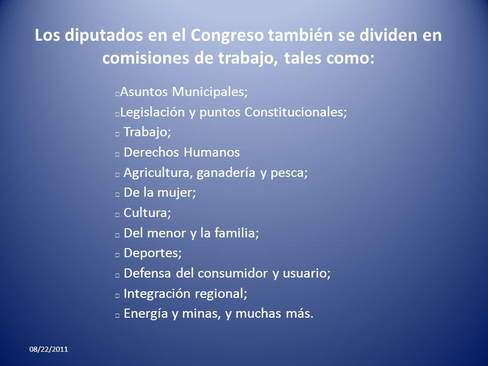Los diputados en el Congreso también se dividen en comisiones de trabajo, tales como: Asuntos Municipales; Legislación y puntos Constitucionales; Trab