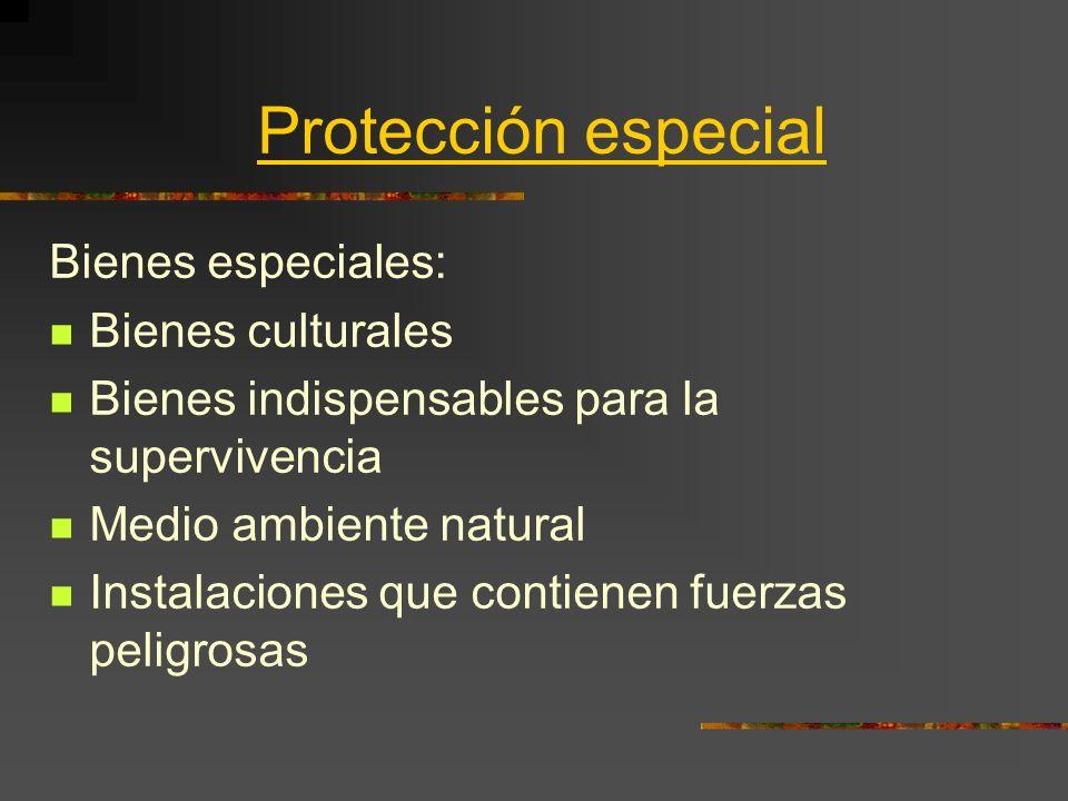 Protección especial Bienes especiales: Bienes culturales Bienes indispensables para la supervivencia Medio ambiente natural Instalaciones que contiene