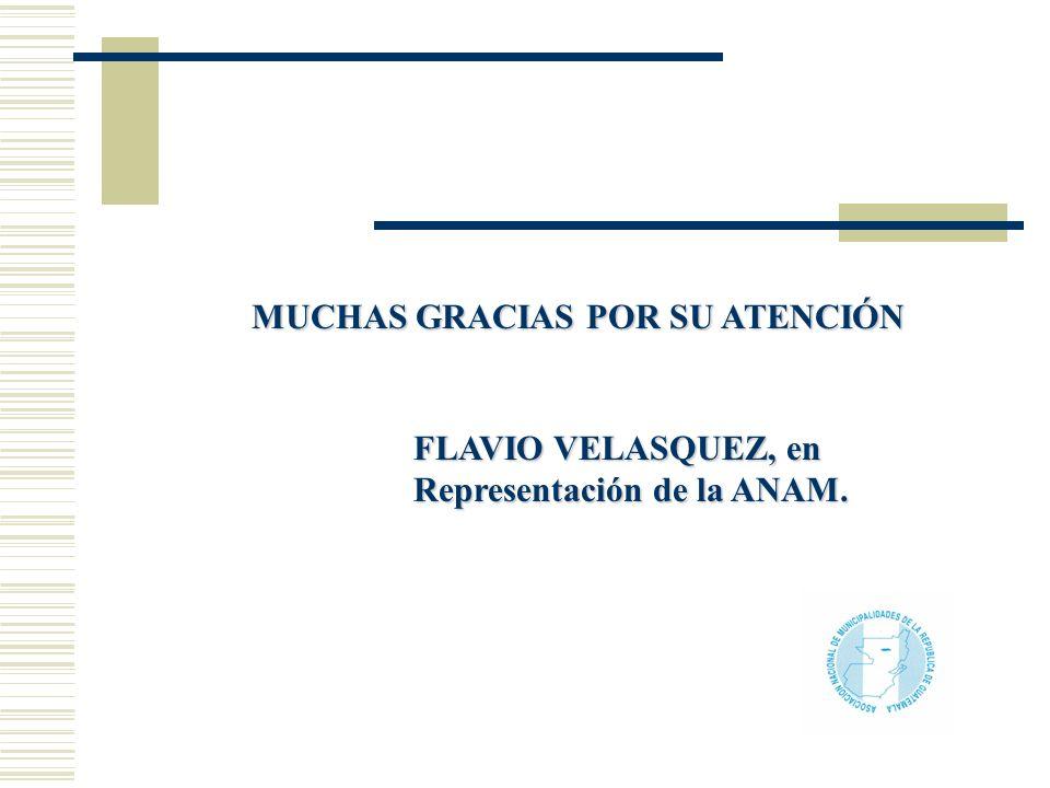 MUCHAS GRACIAS POR SU ATENCIÓN FLAVIO VELASQUEZ, en Representación de la ANAM.
