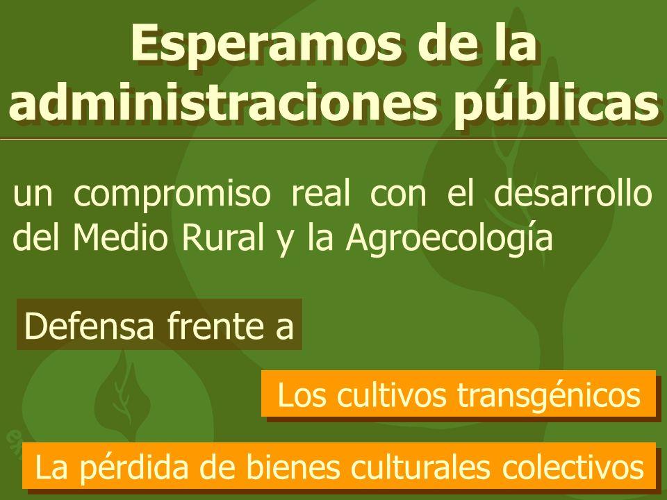 Esperamos de la administraciones públicas un compromiso real con el desarrollo del Medio Rural y la Agroecología Los cultivos transgénicos La pérdida