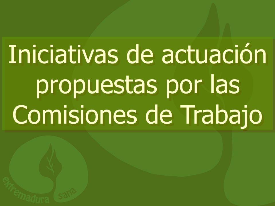 Iniciativas de actuación propuestas por las Comisiones de Trabajo
