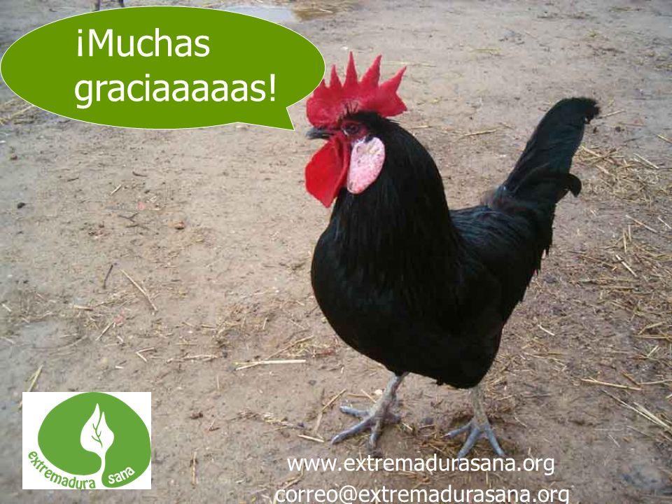 ¡Muchas graciaaaaas! correo@extremadurasana.org www.extremadurasana.org