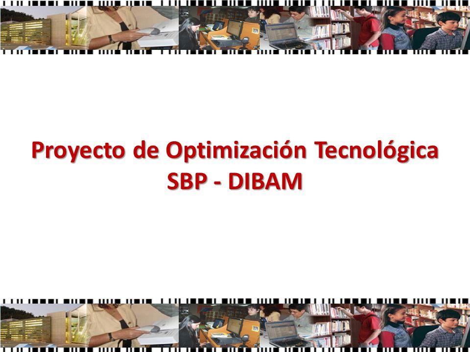 Proyecto de Optimización Tecnológica SBP - DIBAM