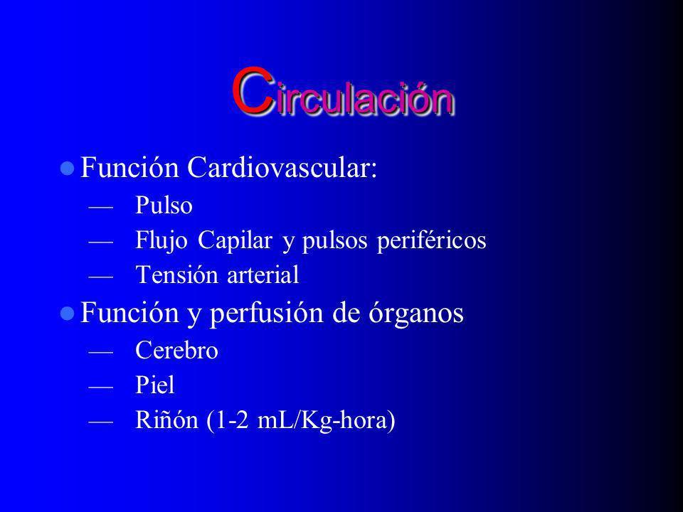 C irculación Función Cardiovascular: Pulso Flujo Capilar y pulsos periféricos Tensión arterial Función y perfusión de órganos Cerebro Piel Riñón (1-2
