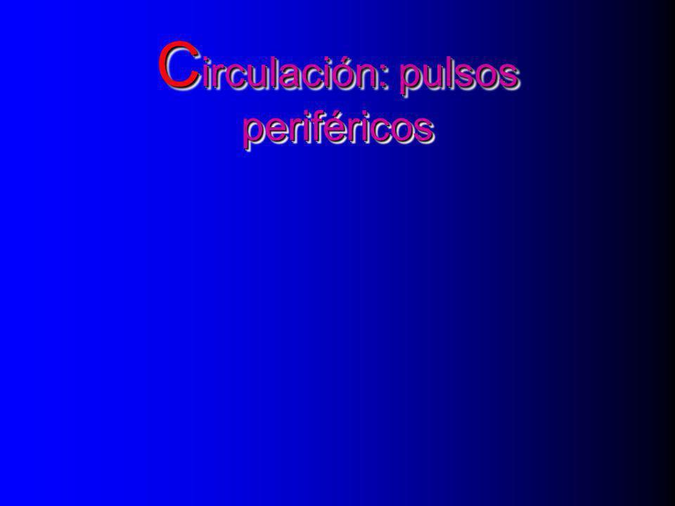 C irculación: pulsos periféricos