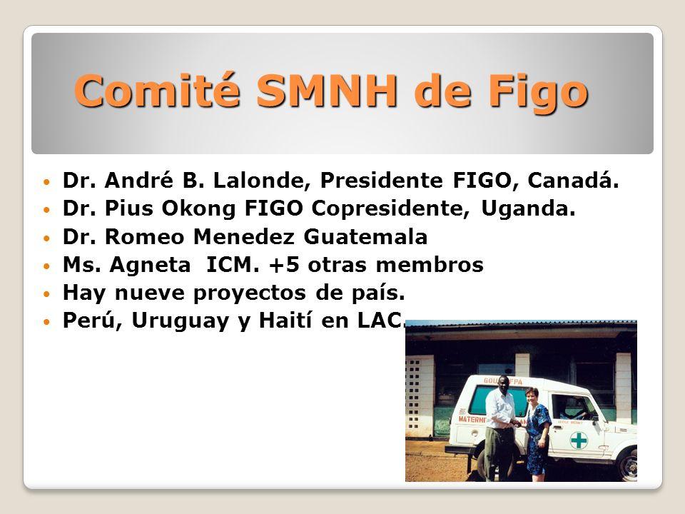 Comité SMNH de Figo Dr. André B. Lalonde, Presidente FIGO, Canadá. Dr. Pius Okong FIGO Copresidente, Uganda. Dr. Romeo Menedez Guatemala Ms. Agneta IC