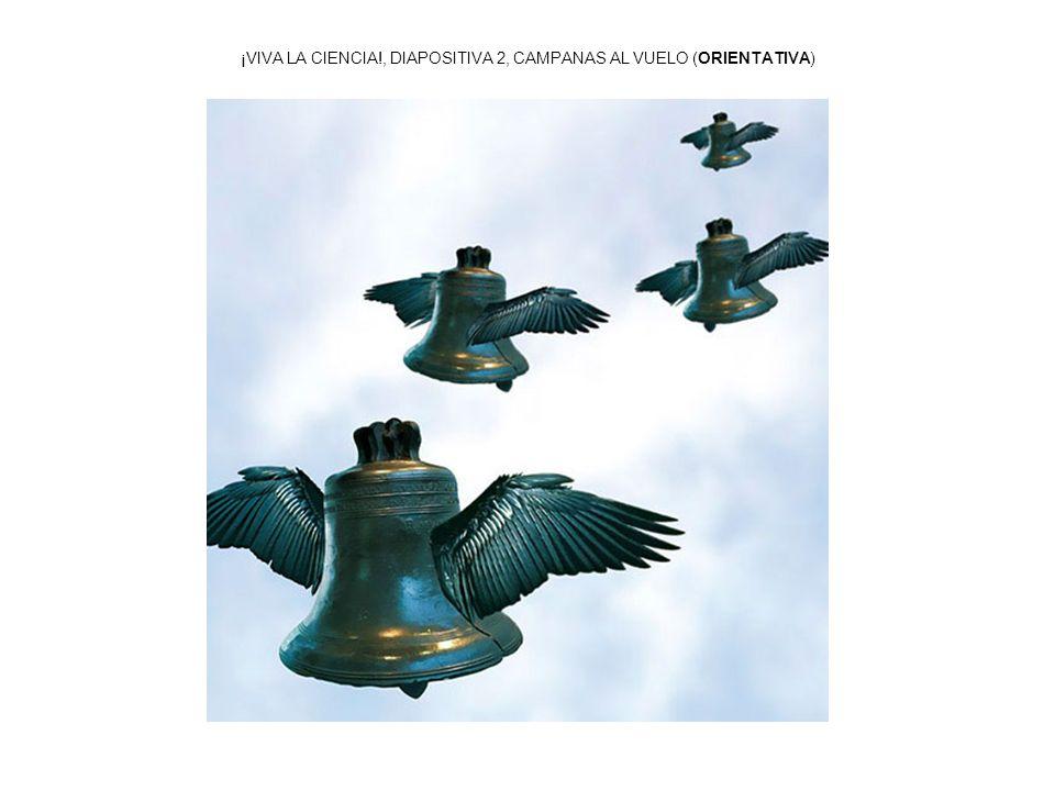 ¡VIVA LA CIENCIA!, DIAPOSITIVA 13, GRAVEDAD (ORIENTATIVA)