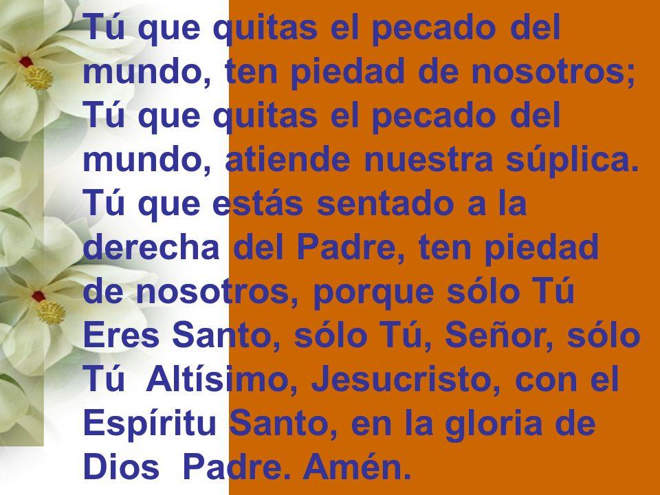 Tú que quitas el pecado del mundo, ten piedad de nosotros; Tú que quitas el pecado del mundo, atiende nuestra súplica. Tú que estás sentado a la derec