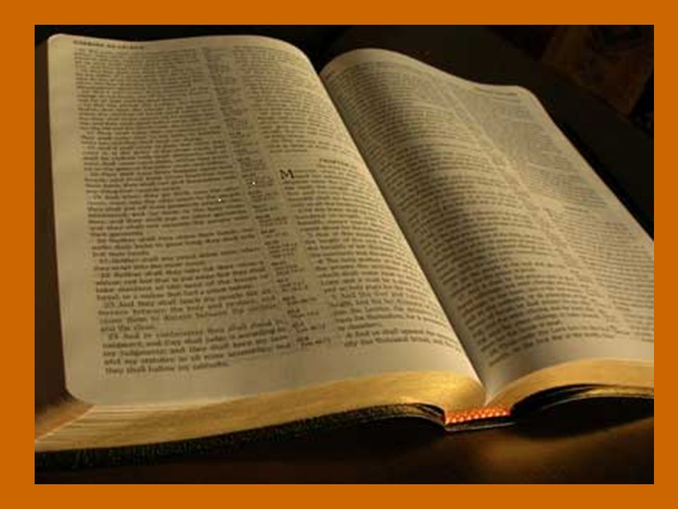 Gustad y ved qué bueno es el Señor; dichoso el que se a coge a él. (Bis)