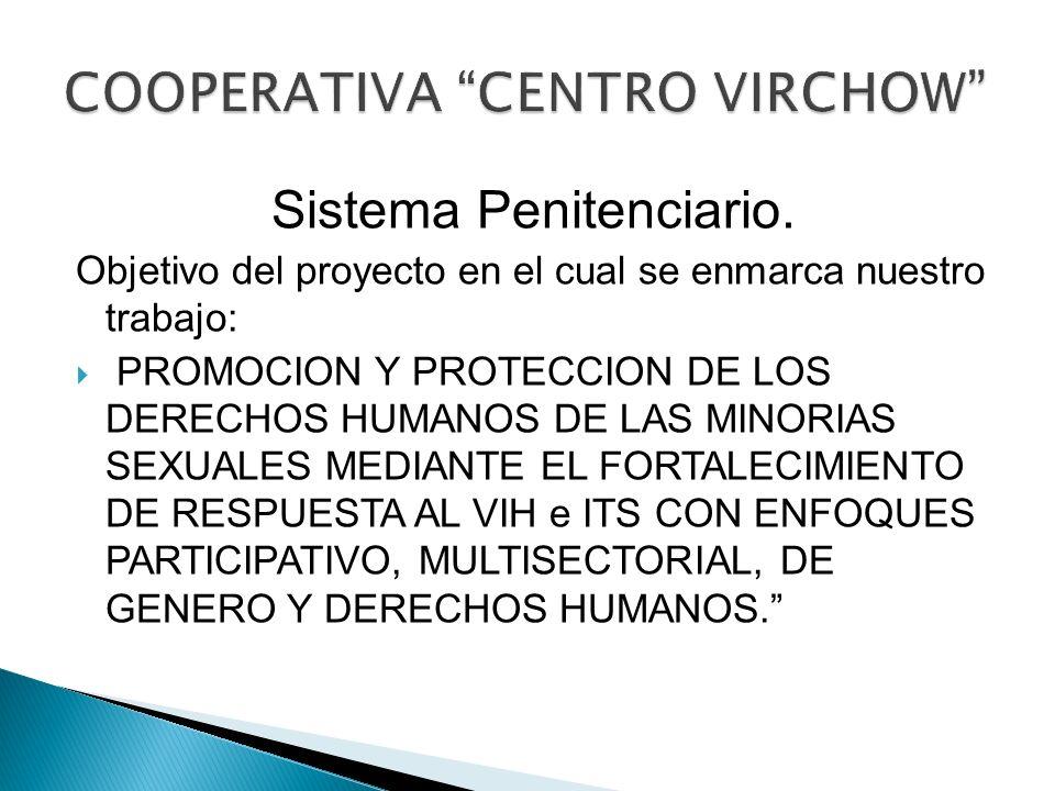 Sistema Penitenciario. Objetivo del proyecto en el cual se enmarca nuestro trabajo: PROMOCION Y PROTECCION DE LOS DERECHOS HUMANOS DE LAS MINORIAS SEX