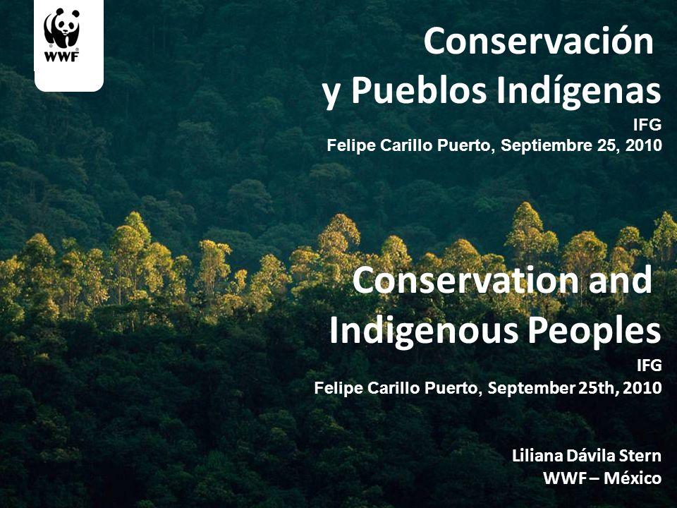 Conservación y Pueblos Indígenas IFG Felipe Carillo Puerto, Septiembre 25, 2010 Conservation and Indigenous Peoples IFG Felipe Carillo Puerto, Septemb