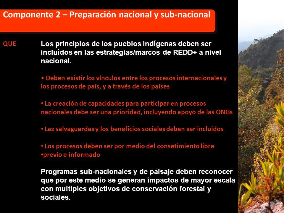 QUE Los principios de los pueblos indígenas deben ser incluídos en las estrategias/marcos de REDD+ a nivel nacional. Deben existir los vínculos entre