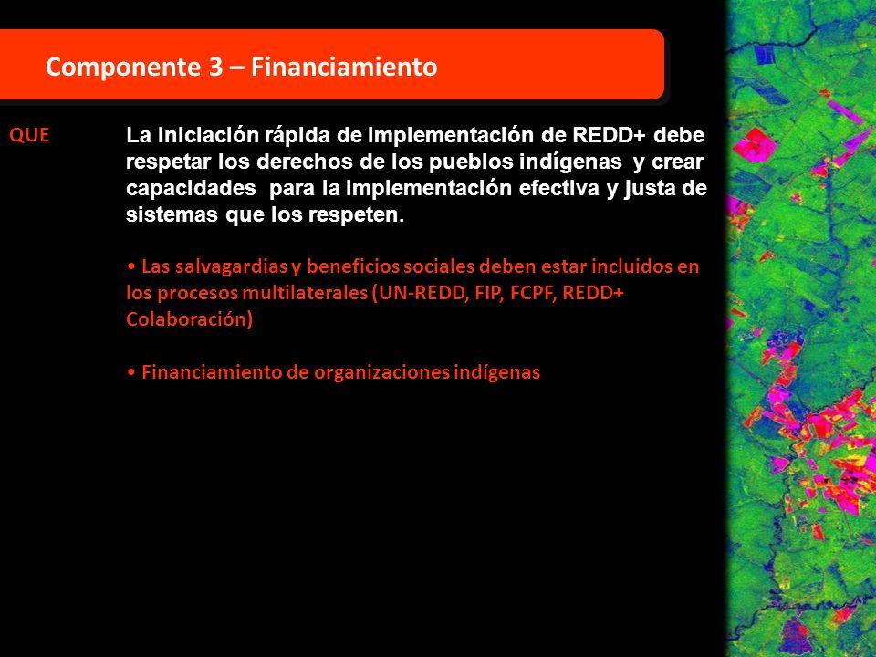 QUE La iniciación rápida de implementación de REDD+ debe respetar los derechos de los pueblos indígenas y crear capacidades para la implementación efe