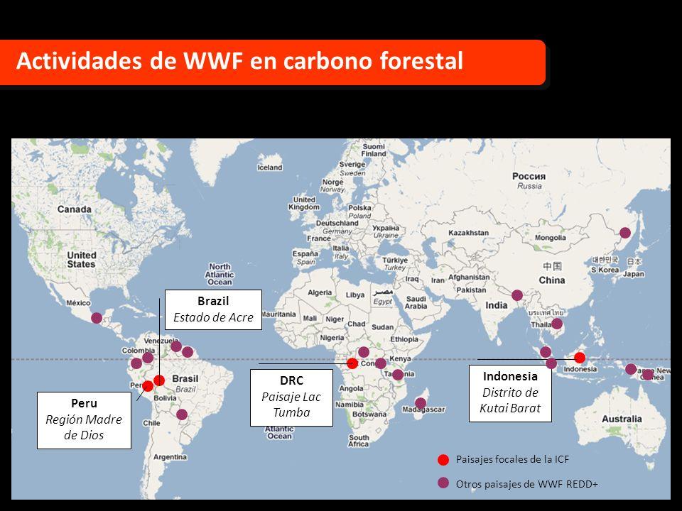 Actividades de WWF en carbono forestal Peru Región Madre de Dios DRC Paisaje Lac Tumba Indonesia Distrito de Kutai Barat Brazil Estado de Acre Paisaje