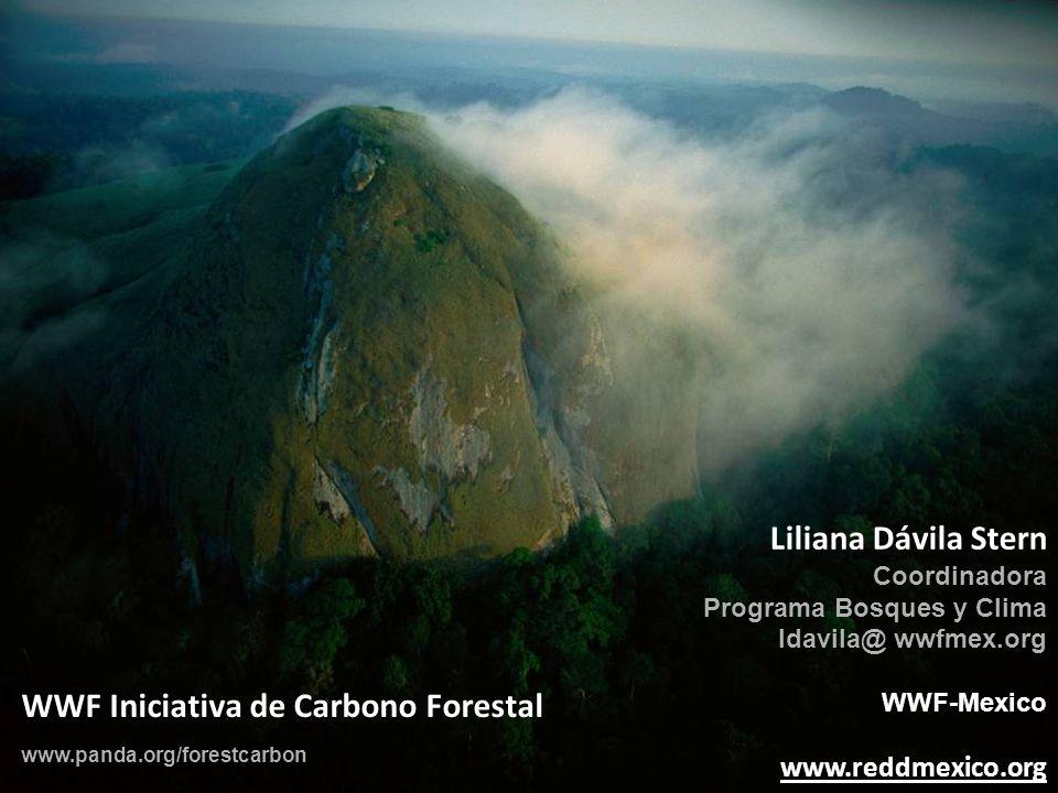 Liliana Dávila Stern Coordinadora Programa Bosques y Clima ldavila@ wwfmex.org WWF-Mexico www.reddmexico.org WWF Iniciativa de Carbono Forestal www.pa
