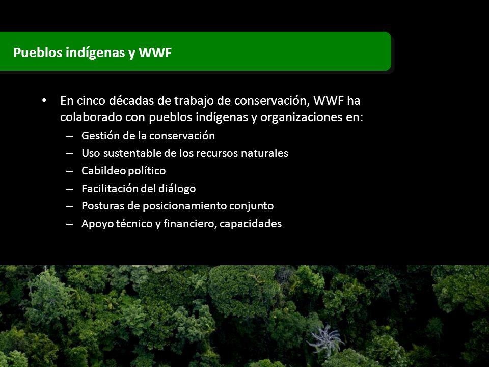 En cinco décadas de trabajo de conservación, WWF ha colaborado con pueblos indígenas y organizaciones en: – Gestión de la conservación – Uso sustentab