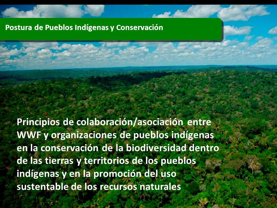 Postura de Pueblos Indígenas y Conservación Principios de colaboración/asociación entre WWF y organizaciones de pueblos indígenas en la conservación d