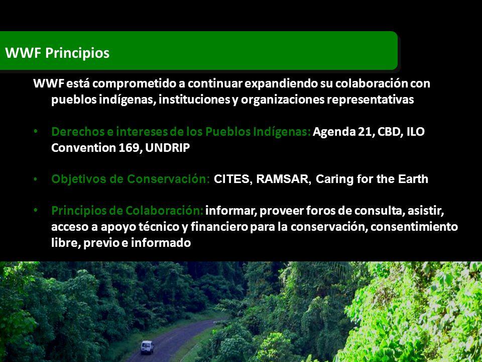 WWF Principios WWF está comprometido a continuar expandiendo su colaboración con pueblos indígenas, instituciones y organizaciones representativas Der