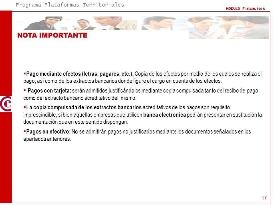 Programa Plataformas Territoriales MÓDULO Financiero 17 Pago mediante efectos (letras, pagarés, etc.): Copia de los efectos por medio de los cuales se