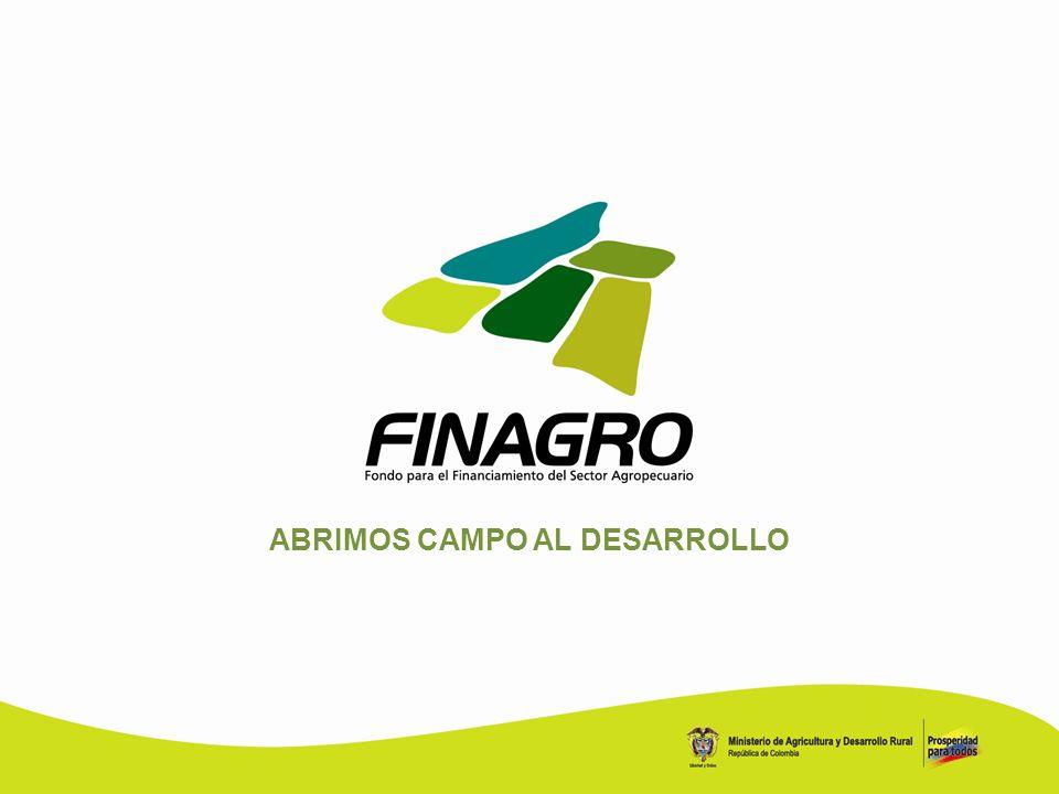 ABRIMOS CAMPO AL DESARROLLO