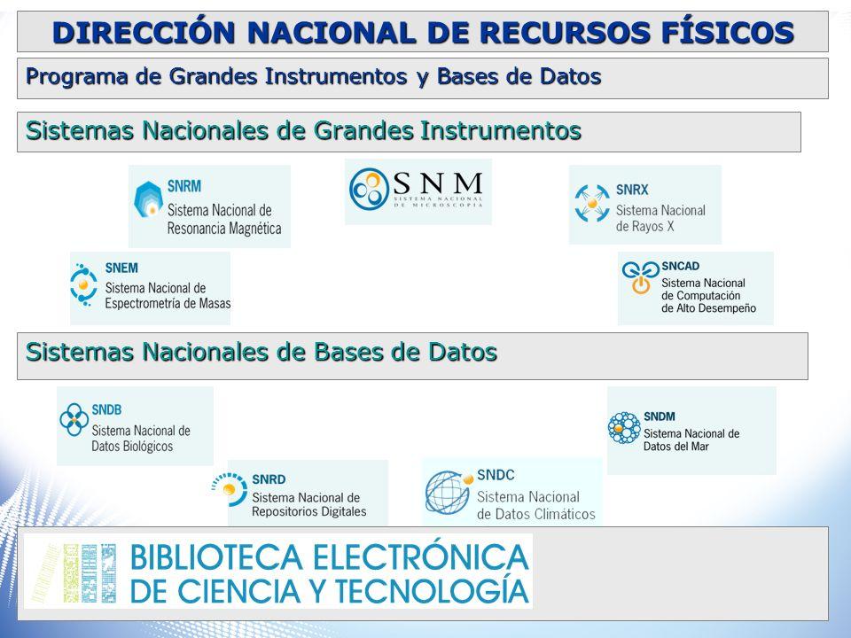 Sistemas Nacionales de Grandes Instrumentos Sistemas Nacionales de Bases de Datos DIRECCIÓN NACIONAL DE RECURSOS FÍSICOS Programa de Grandes Instrumen