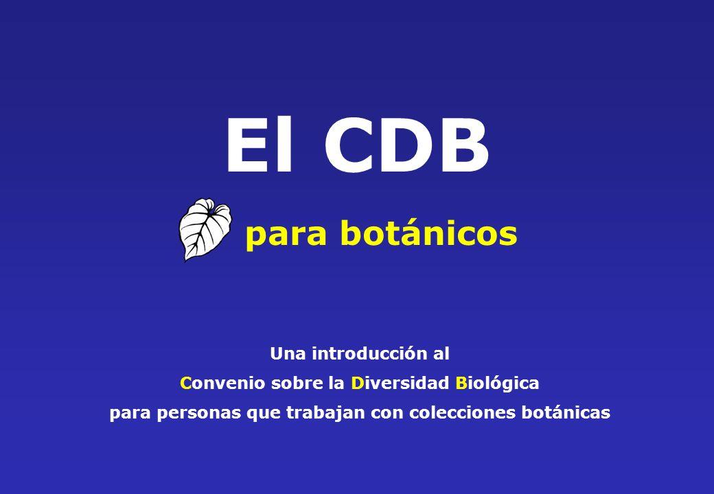 El CDB para botánicos Una introducción al Convenio sobre la Diversidad Biológica para personas que trabajan con colecciones botánicas