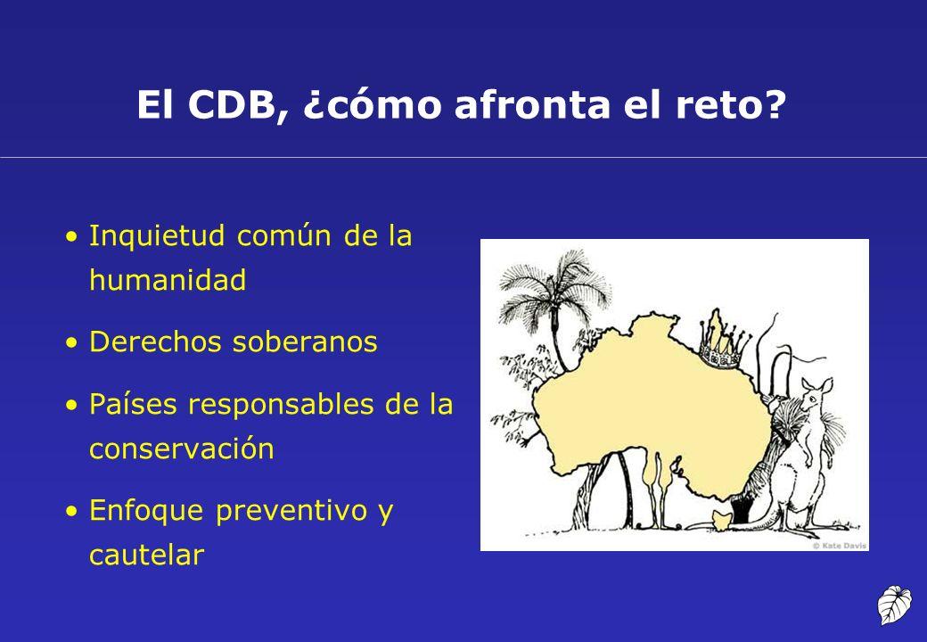 El CDB, ¿cómo afronta el reto? Inquietud común de la humanidad Derechos soberanos Países responsables de la conservación Enfoque preventivo y cautelar