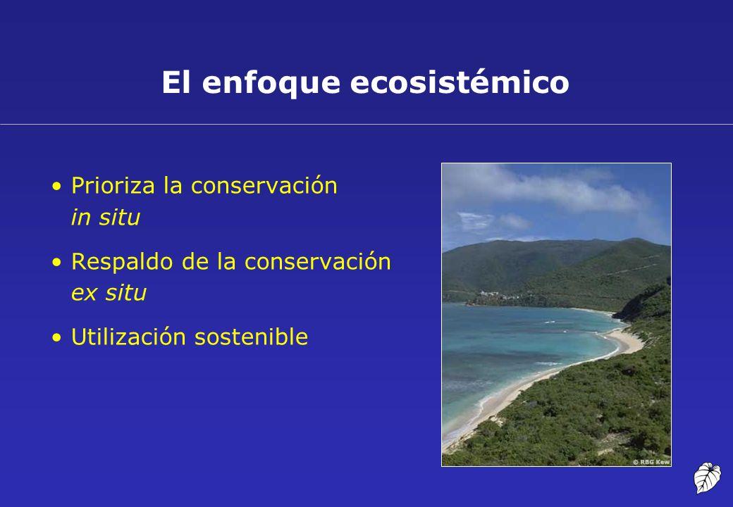El enfoque ecosistémico Prioriza la conservación in situ Respaldo de la conservación ex situ Utilización sostenible
