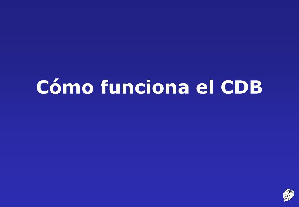 Cómo funciona el CDB