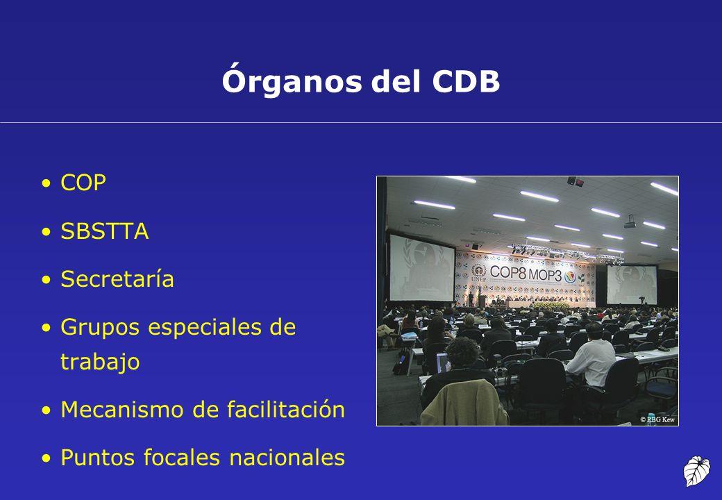 Órganos del CDB COP SBSTTA Secretaría Grupos especiales de trabajo Mecanismo de facilitación Puntos focales nacionales