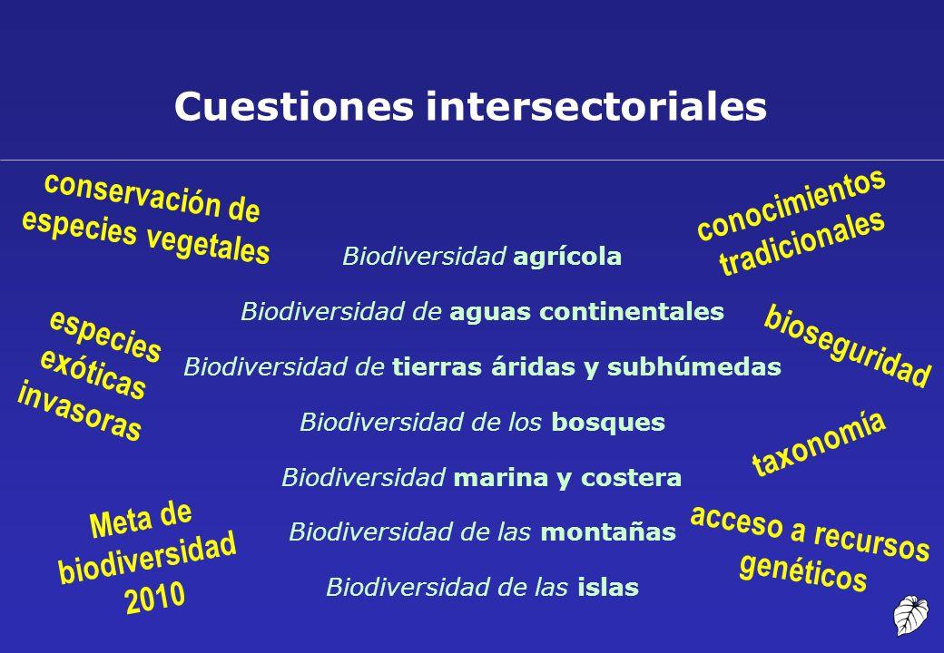 Cuestiones intersectoriales bioseguridad Meta de biodiversidad 2010 conservación de especies vegetales acceso a recursos genéticos conocimientos tradi