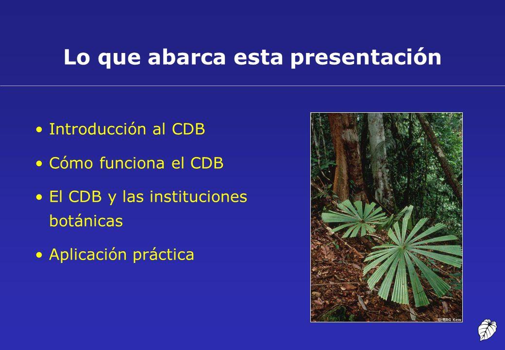 Introducción al CDB Cómo funciona el CDB El CDB y las instituciones botánicas Aplicación práctica Lo que abarca esta presentación