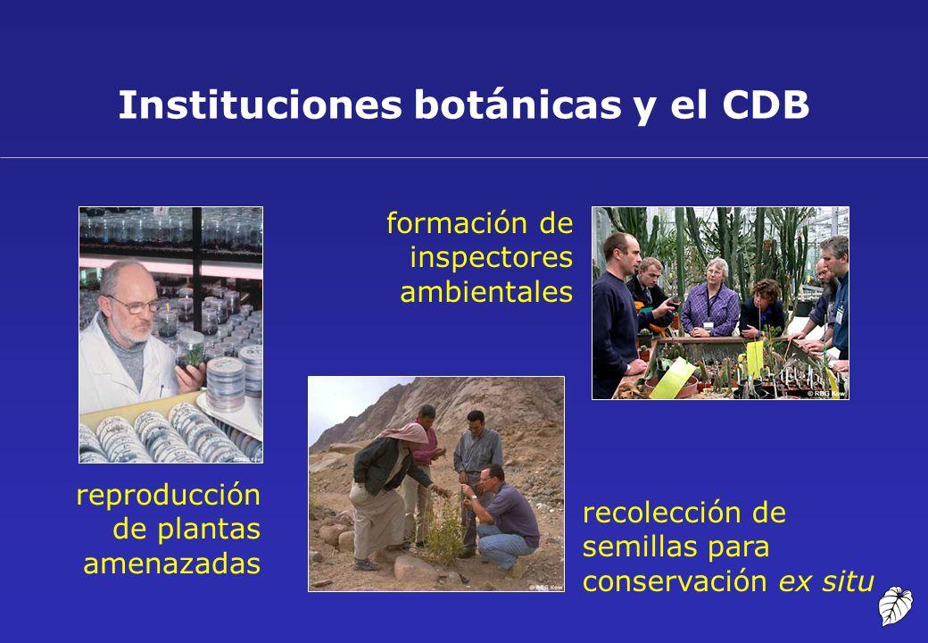 Instituciones botánicas y el CDB reproducción de plantas amenazadas recolección de semillas para conservación ex situ formación de inspectores ambient