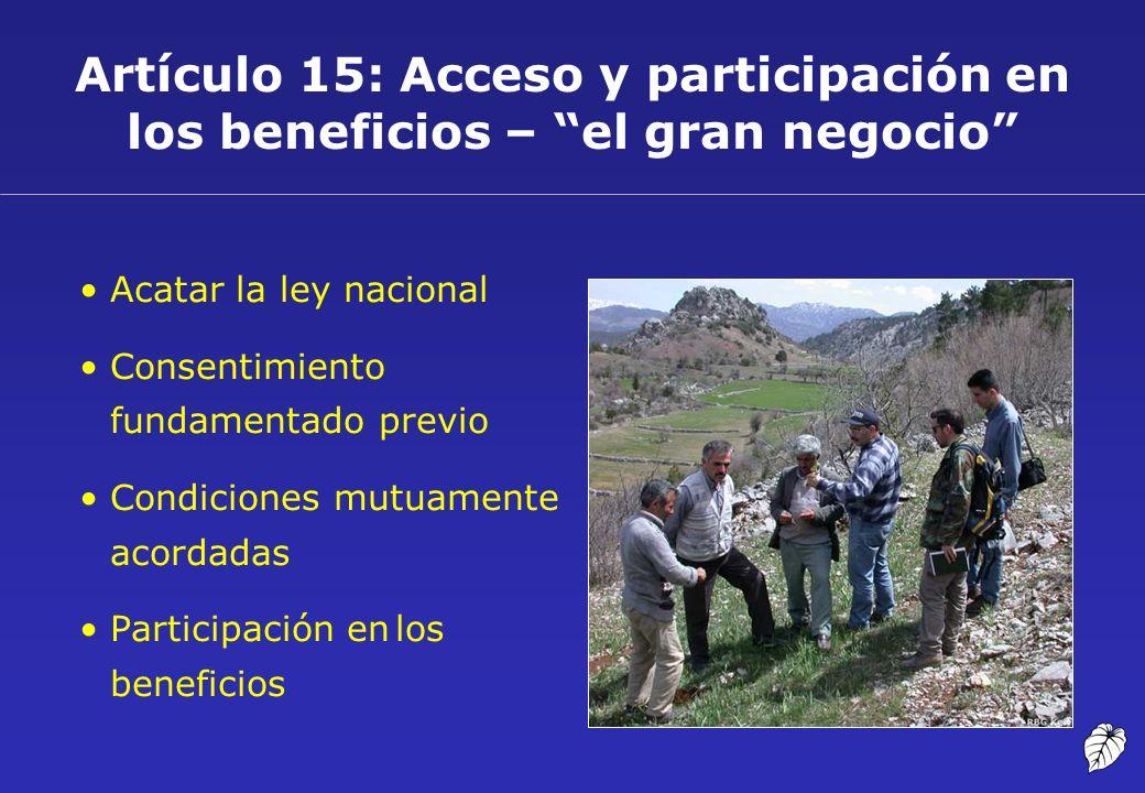 Artículo 15: Acceso y participación en los beneficios – el gran negocio Acatar la ley nacional Consentimiento fundamentado previo Condiciones mutuamen