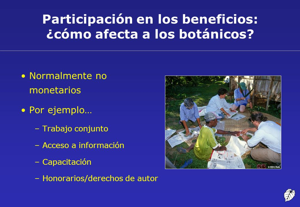Participación en los beneficios: ¿cómo afecta a los botánicos? Normalmente no monetarios Por ejemplo… –Trabajo conjunto –Acceso a información –Capacit