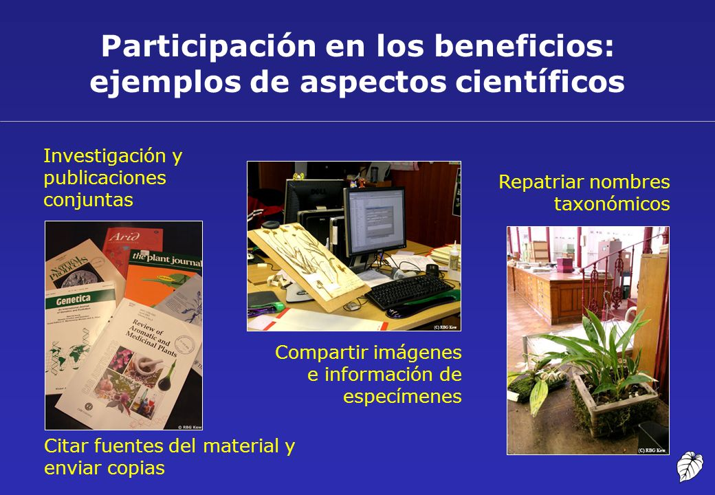 Participación en los beneficios: ejemplos de aspectos científicos Investigación y publicaciones conjuntas Repatriar nombres taxonómicos Citar fuentes