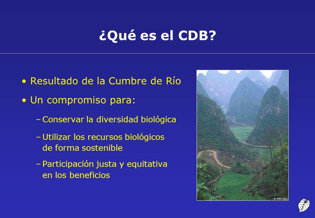 Resultado de la Cumbre de Río Un compromiso para: –Conservar la diversidad biológica –Utilizar los recursos biológicos de forma sostenible –Participac